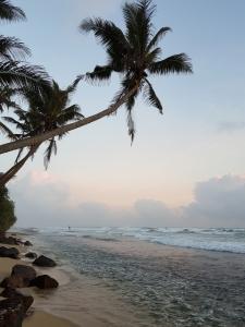 Beach at Thalpe Sri Lanka