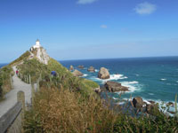 Walk to Nugget Point Lighthouse
