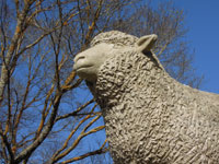 Big Lamb Statue, Guyra